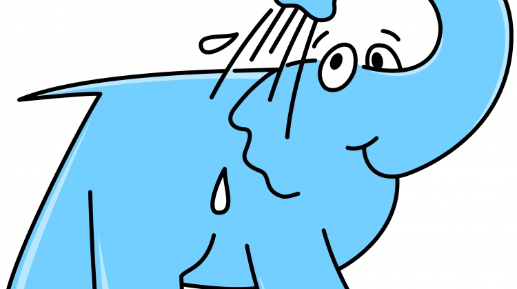 Centre de lavage Eléphant Bleu de LE MANS